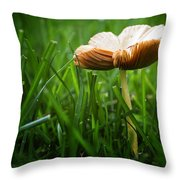 Mushroom Growing Wild On Lawn Throw Pillow