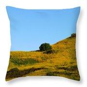 Mustard Grass Throw Pillow