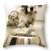 My Best Friend's Birthday Throw Pillow