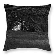 Mystical Yew Trees 1 Throw Pillow