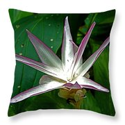 Narcissus In Jim Thompson House And Museum In Bangkok-thailand. Throw Pillow