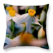 Narcissus Tazetta Throw Pillow