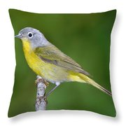 Nashville Warbler Vermivora Ruficapilla Throw Pillow