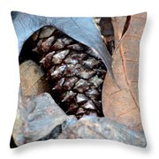 Natural Abstract 47 Throw Pillow