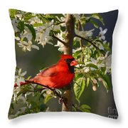 Red Cardinal In Flowers Throw Pillow