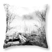 Natural Ice Fog  Throw Pillow