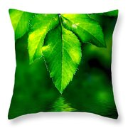 Natural Leaves Background Throw Pillow