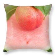 Nectarine With Leaves On Slice Of Watermelon Throw Pillow