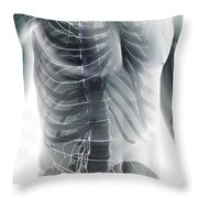 Nerves Of The Trunk Throw Pillow