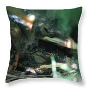 Nest Of American Robins Throw Pillow