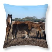 New Forest Ponies Throw Pillow