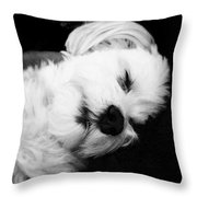 Nighty Night Throw Pillow