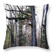 North Texas Trees Throw Pillow