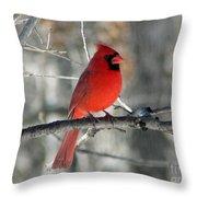 Northern Cardinal 2  Throw Pillow