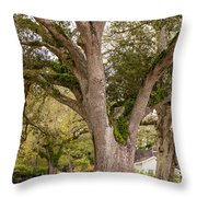 Oak Alley Backyard Throw Pillow