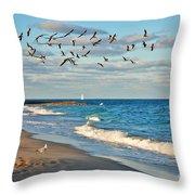 1- Ocean Reef Park Throw Pillow
