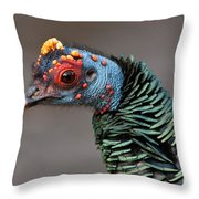Ocellated Turkey Portrait Throw Pillow