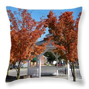Ohio Trees Throw Pillow