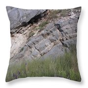 Oklahoma Rock Show And Flower Free For All IIi Throw Pillow