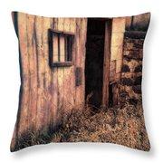 Old Barn Door Throw Pillow
