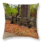 Old Wooden Fence Throw Pillow