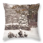 On A Winter Day Throw Pillow