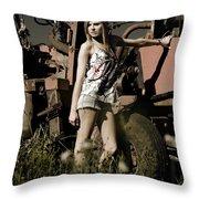 On The Farm At Dusk Throw Pillow