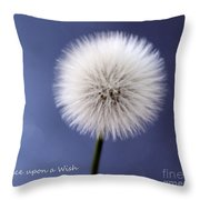 Once Upon A Wish Throw Pillow