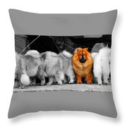 One Of A Kind Throw Pillow