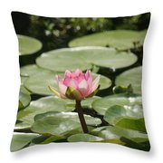 1 Open Pink Lily And 1 Opening... Throw Pillow