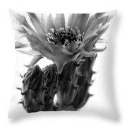 Opuntia Basilaris Cactus Throw Pillow