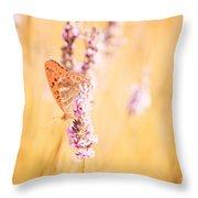 Orange Butterfly Throw Pillow