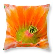 Orange Cactus Flower Throw Pillow