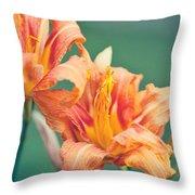 Orange Double Daylily Throw Pillow