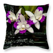 Orchid Flowers Growing Through Old Wooden Picture Frame Throw Pillow