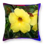 Orchid Pink Flower Bud Photographed At Costa Rica Sensual Smile Graphic Dital Painted Background Ide Throw Pillow