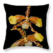 Orchid Series 104 Throw Pillow