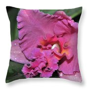 Orchid Sophrocattleya Royal Beau   H And R Throw Pillow