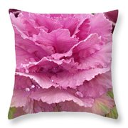 Ornamental Cabbage Throw Pillow