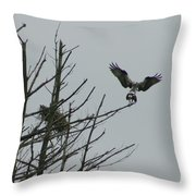 Osprey Love Throw Pillow