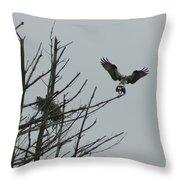 Osprey Love Throw Pillow