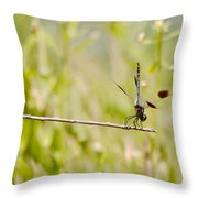 Out On A Twig Throw Pillow