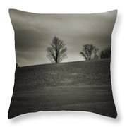 Outside Chester Ny Throw Pillow