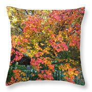 Pallette Of Fall Colors Throw Pillow