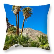 Palm Oasis On Borrego Palm Canyon Trail In Anza-borrego Desert Sp-ca Throw Pillow