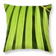 Palm Tree Leaf Throw Pillow