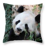 Panda Eating Throw Pillow