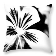 Pansy Flower Black And White 01 Throw Pillow