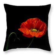 Papaver Throw Pillow