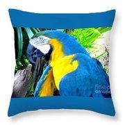 Blue Yellow Macaw. Parrot. Photo Of Bird Throw Pillow